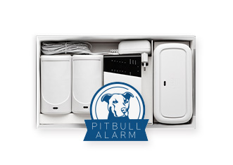 PITBULL-grid-photo-2