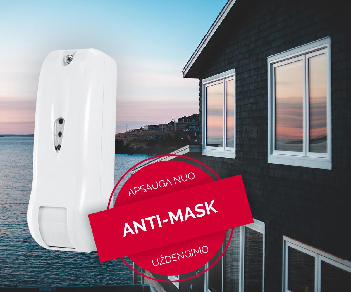 LT-Anti-masking-EWC1AM